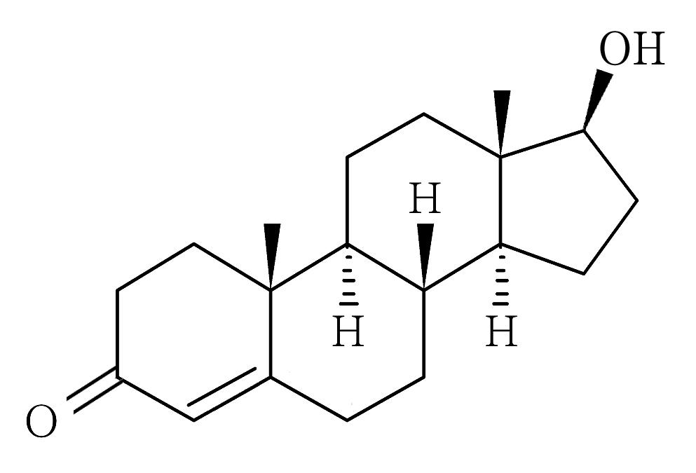 ジヒドロ テストステロン 抑制